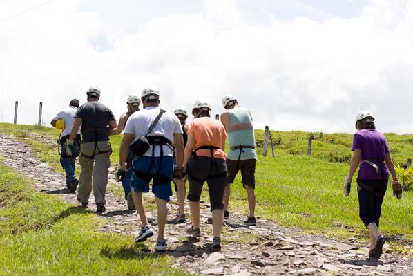 group-walk-rainforest