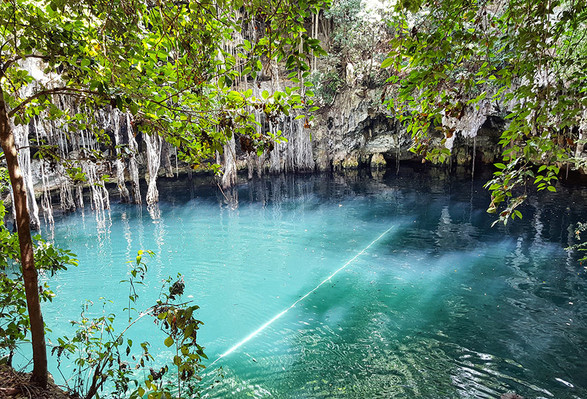 Visit to Cenote World Wonder discovery